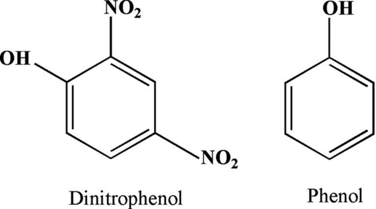 Dnp (2,4-Dinitrophenol) Nedir ?