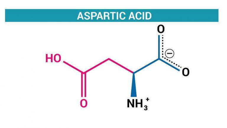 Aspartik Asit ( N-Metil-D-Aspartic Acid ) Nedir ?