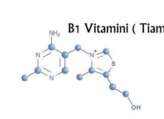 B1 Vitamini ( Tiamin ) yeni