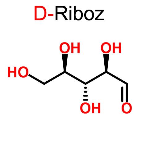 D-Riboz Nedir ?