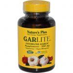 Garlic ( Sarımsak ) Nedir ?