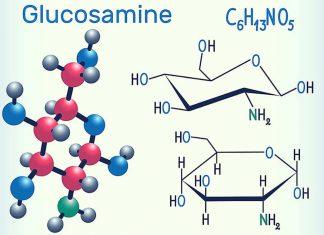 Glucosamine ( Glukozamin ) yeni 1