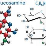 Glucosamine ( Glukozamin ) Nedir Ve Ne İşe Yarar ?