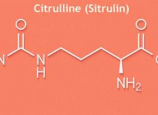Citrulline (Sitrulin) yeni