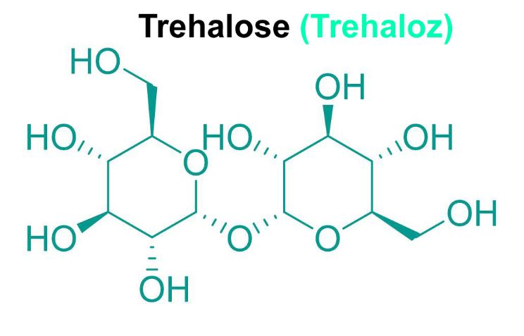 Trehalose (Trehaloz) Nedir ?