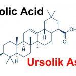 Ursolic Acid ( Ursolik Asit ) Nedir ?