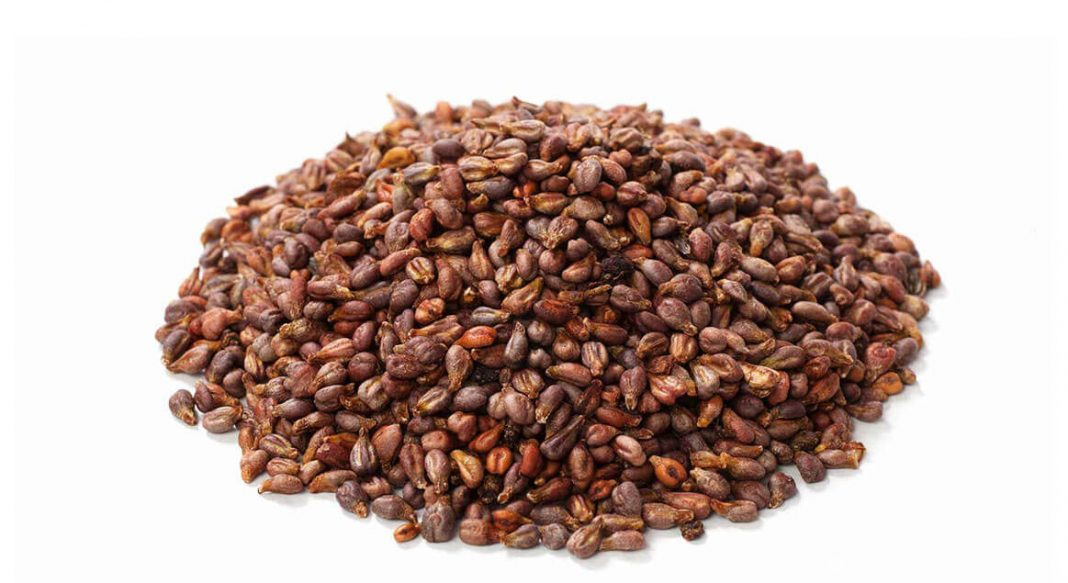 Uzum Cekirdegi Ekstresi (Grape Seed Extract) yeni 1