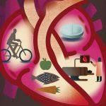 En İyi Kalp Sağlığı Ve Ömür Nasıl Sağlanabilir?