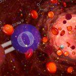 Nitrik Oksit Supplementleri Ve Şaşırtıcı Bir Nörotransmitter