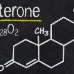 Testosteron Nasıl Doğal Olarak Yükseltilir (9 Yöntem)