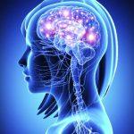 Dopamin Hormonu Nedir: Reseptörleri ve Eksikliği