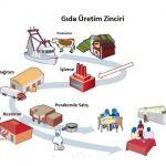 Gıda Endüstrisi Bilime Ayak Uydurmak İçin Nasıl Çalışıyor?
