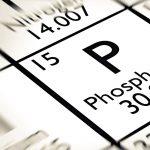 Fosfor (Elementi) Nedir ?