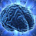 Serotonin (Mutluluk Hormonu) Nedir Ve Nasıl Arttırılır?