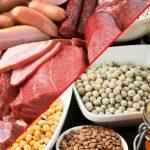Tip 2 Diyabet İçin Gerekli Bitki ve Hayvan Proteinleri