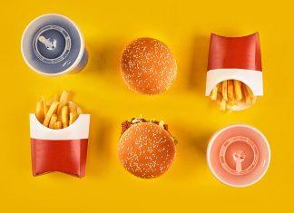 Fast Food ve Bagisiklik Sistemi Problemi yeni 1