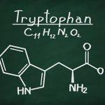 Triptofan Nedir ?