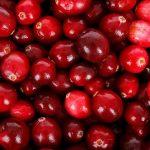 Cranberry (Kızılcık) Nedir ?