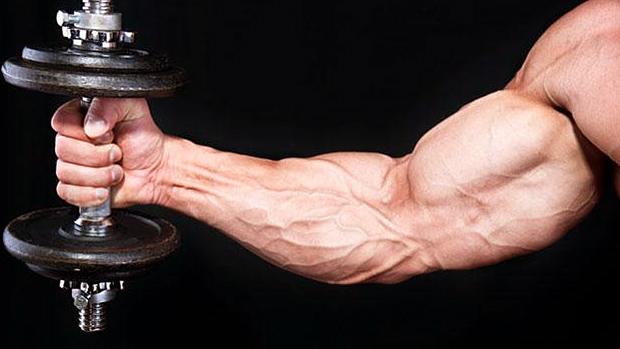 Biceps Hareketleri (10 En Etkili)