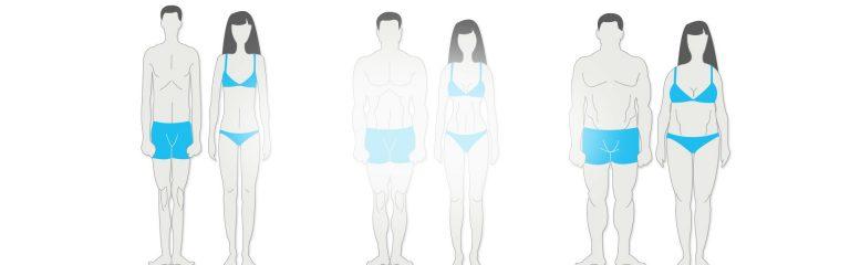 Endomorf, Mezomorf ve Ektomorf Vücut Tipleri