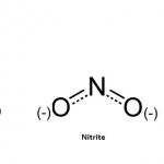 Nitrat Supplementini Kimler Kullanmalı ?