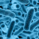 Pro-Prebiyotiklerin Ameliyat Sonrası Enfeksiyonları Azaltır