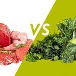 Kemik Sağlığı İçin Bitki Ve Hayvansal Protein