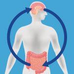 Probiyotikler Endişeyi Ortadan Kaldırabilir Mi?