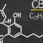 Cannabidiol (CBD) Nedir?