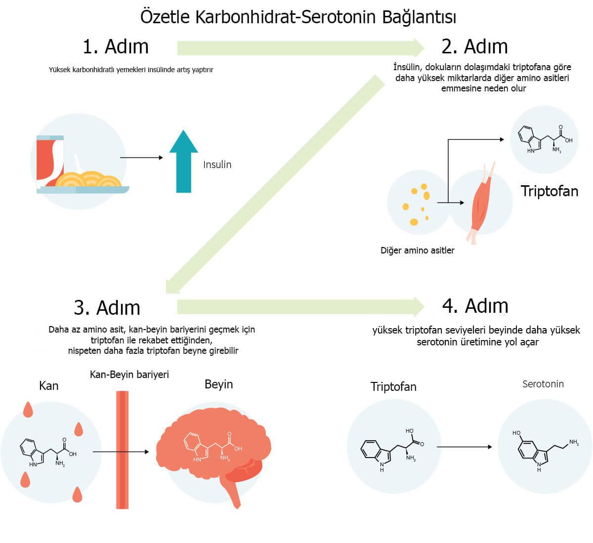 Karbonhidrat-Serotonin bağlantısı, şeker