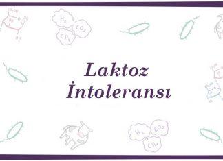 Laktoz İntoleransı nedir