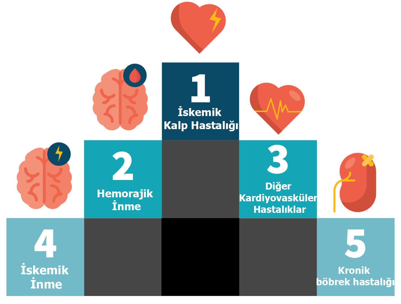 Hipertansiyonun neden olduğu çoğu külfetli hastalıklar (1)