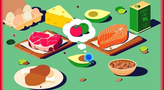 diyet makro besin modelleri
