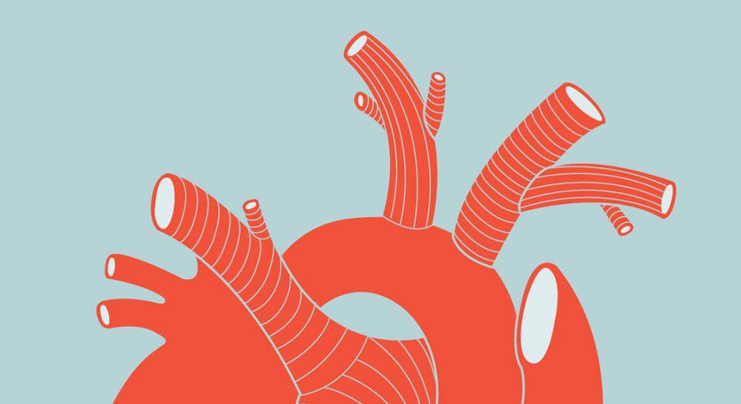 Etten Bitki Bazlı Et Alternatiflerine Geçiş Kardiyovasküler Hastalık Riskini Azaltabilir Mi?